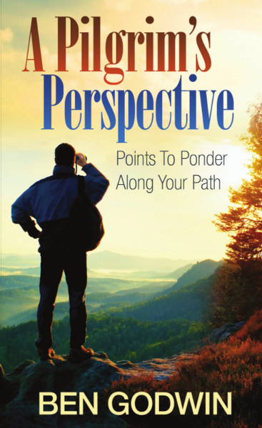 A Pilgrim's Perspective $13.99